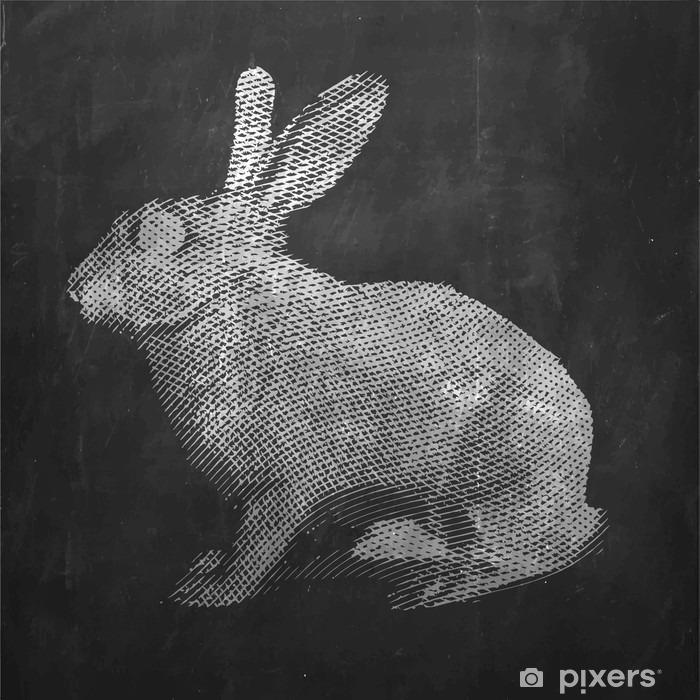 Fototapeta winylowa Królik. Zwierzę hodowlane. Vintage ilustracja grawerowane na czystym tle. - Zwierzęta
