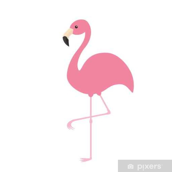 Pink Flamingo Exotic Tropical Bird Zoo Animal Collection Cute Cartoon Character Decoration Element Flat Design White Background Isolated Wall Mural Pixers We Live To Change