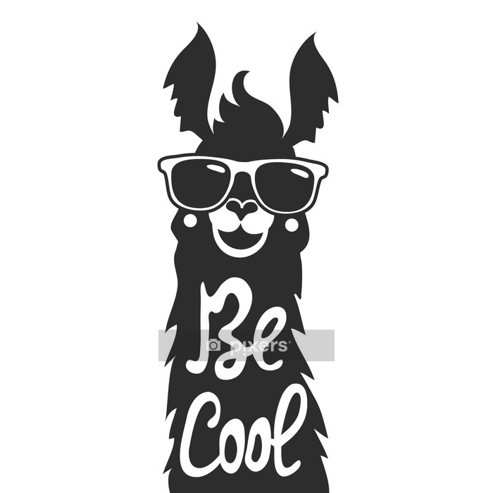 Vector illustration with stylish llama animal in sunglasses. Be cool - lettering quote. Wall Decal - Animals