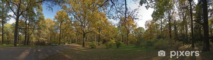 Papier peint vinyle Panorama d'automne, l'été indien avec des chênes, bouleaux et la broche noire - Saisons