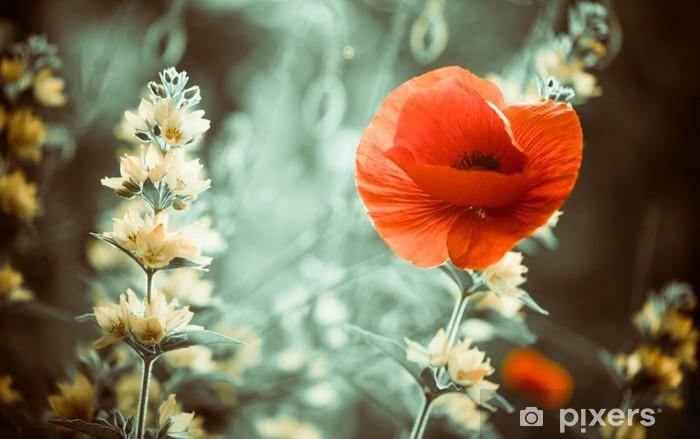 Pixerstick Sticker Rode papaver bloem in de tuin zonsondergang - Bloemen en planten