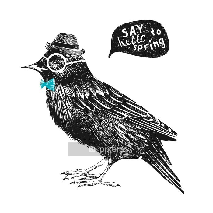 dressed up starling Wall Decal - Motivations