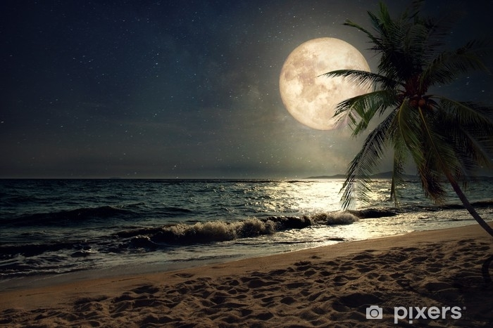 Beautiful fantasy tropical beach with Milky Way star in night skies, full  moon - Retro style artwork with vintage color tone (Elements of this moon