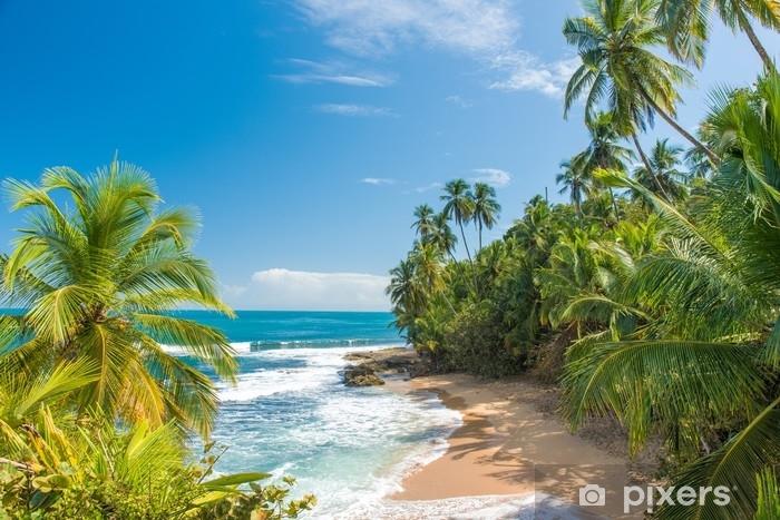 Vinilo Pixerstick Playa caribeña salvaje de manzanillo en puerto viejo, costa rica - Paisajes