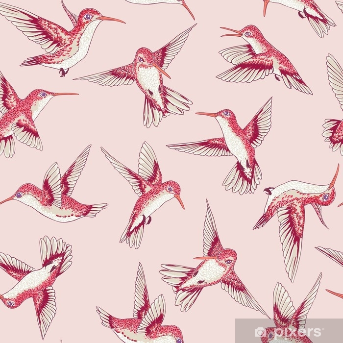 Sticker Pixerstick Vecteur transparente battant petit modèle de conversation des oiseaux de paradis, printemps été, doux colibri romantique, colibri fond allover impression design - Animaux