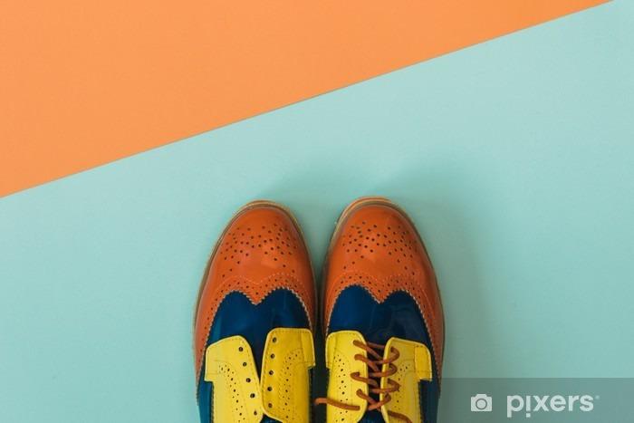 Fototapeta samoprzylepna Płaski lay zestaw mody: kolorowe vintage buty na kolorowym tle. Widok z góry. - Styl życia