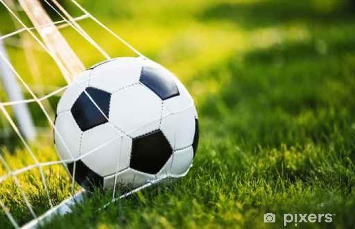 Papier peint vinyle Ballon de football dans le but - Sports