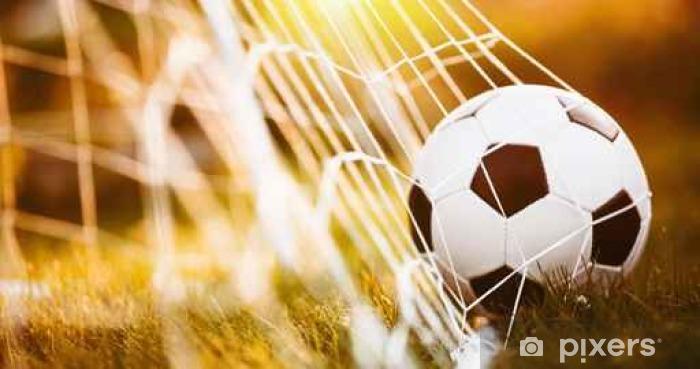 Fototapeta samoprzylepna Piłka w bramce - Sport