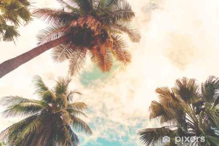 Fotomural Estándar Paisaje de fondo de la naturaleza del trópico orilla. árboles de palma de coco en costa tropical junto al mar, filtro de efecto de la vendimia y estilizada - Plantas y flores