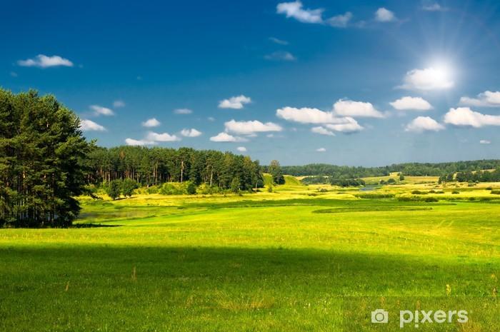 Naklejka Pixerstick Krajobrazu wiejskiego - Pory roku