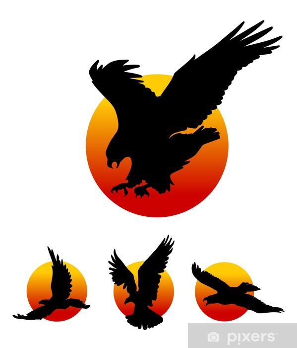 Flying Eagle Silhouettes Wall Mural Pixers We Live To Change Find here the best collection of eagle bird silhouette, clipart images, pictures and vectors. flying eagle silhouettes wall mural pixers we live to change