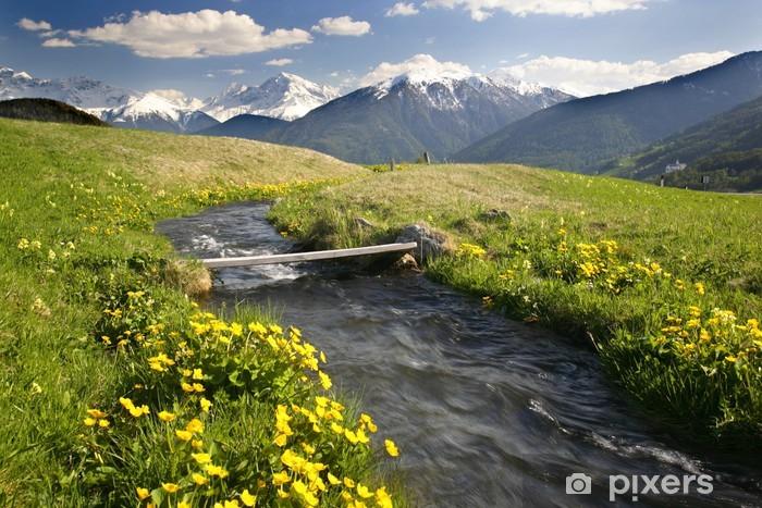 Carta da Parati in Vinile Alpine transizione ruscello nel Sud - Vacanze