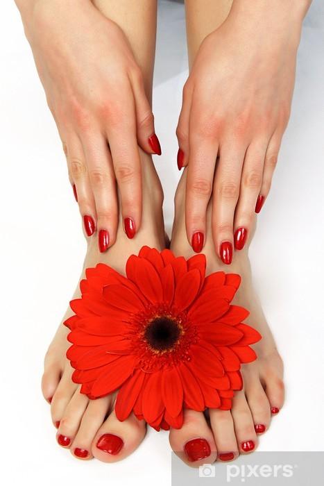 Afwasbaar Fotobehang Rode manicure en pedicure met delicate herbera - Schoonheid en Lichaamsverzorging