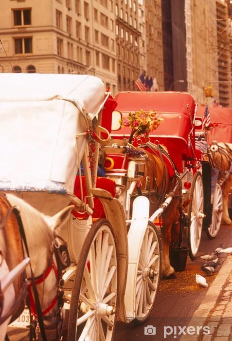 Papier peint vinyle Voitures à cheval à New York - Villes américaines