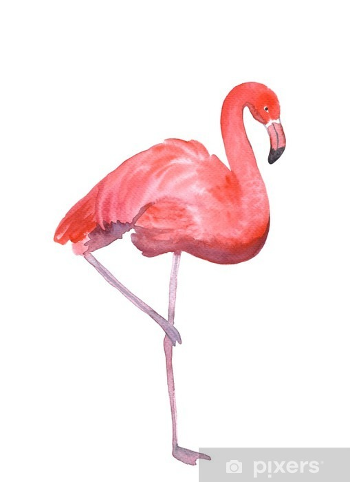 Pink flamingo isolated Wardrobe Sticker - Animals