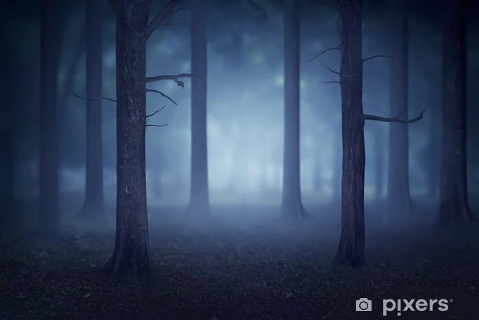 Fototapeta winylowa Las z mnóstwem drzew i mgły - Krajobrazy