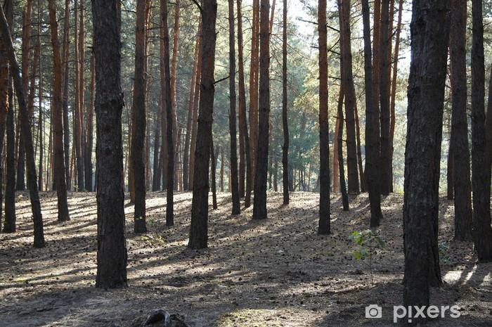 Sticker Pixerstick Woodland - Forêt