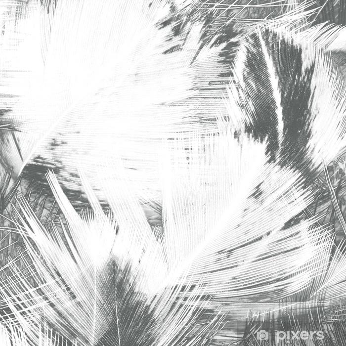 Vinyl Fotobehang Abstracte creatieve achtergrond van veren. - Grafische Bronnen