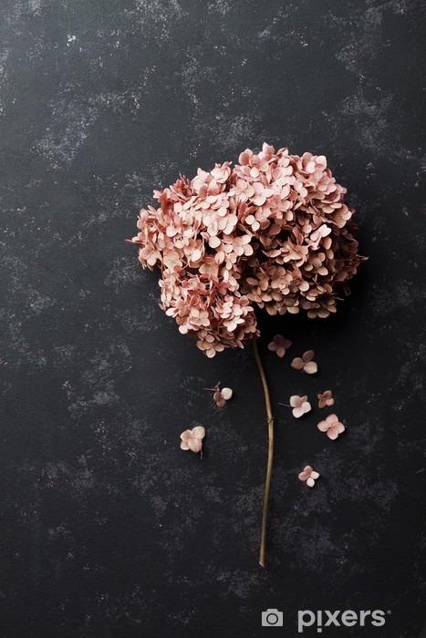 Bureau- en Tafelsticker Gedroogde bloemen hortensia op zwart vintage tafel bovenaanzicht. Plat styling. - Bloemen en Planten