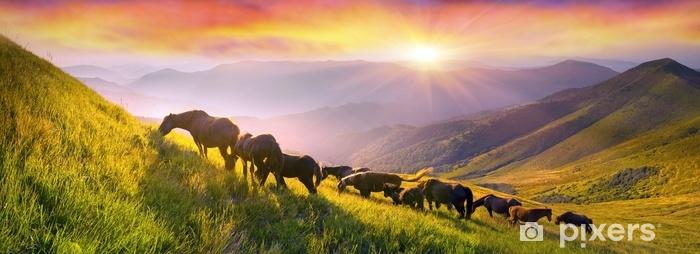 Zelfklevend Fotobehang Paarden op de bergtop - Dieren
