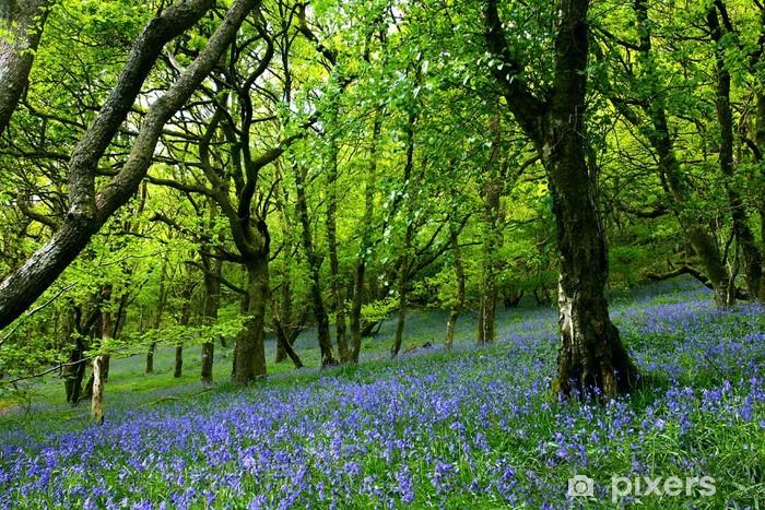 bluebell fairyland Pixerstick Sticker - Flowers