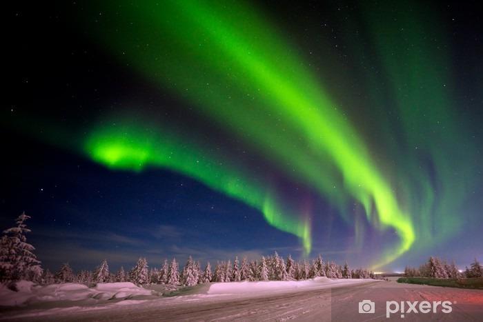 Fototapeta winylowa Winter night krajobraz z lasu, drogi i światła polarnego nad drzewami. - Środowisko