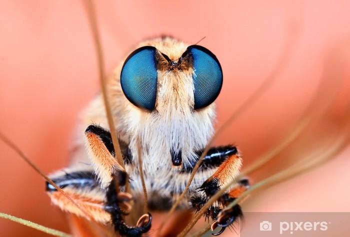 Naklejka Pixerstick Roberfly - Zwierzęta