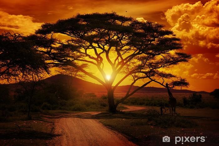 Vinyl Fotobehang Afrika Zonsondergang - Thema's