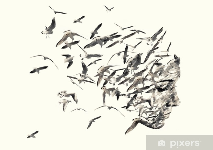 Double exposure portrait of young women and seagulls. Vinyl Wall Mural - Animals