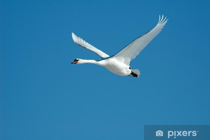 Nálepka Pixerstick Létající Swan - Ptáci