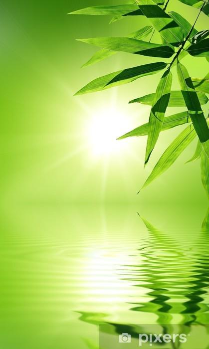 papier peint feuille de bambou avec reflet dans l 39 eau ambiance zen pixers nous vivons. Black Bedroom Furniture Sets. Home Design Ideas
