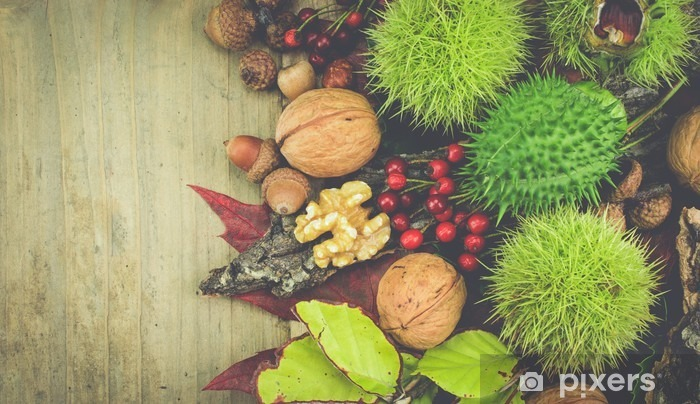Fototapeta winylowa Vintage jesieni owoców kolekcji .__ Różnego rodzaju orzechów w skorupach, dzikiej róży i liści na powierzchni drewnianych z miejsca kopiowania na lewej stronie obrazu. - Jedzenie