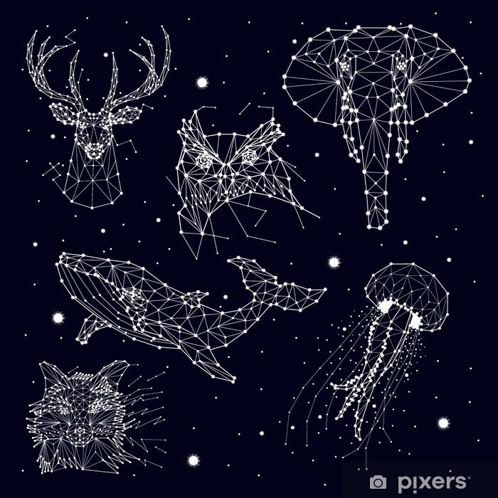 set of constellation , elephant, owl, deer, whales , jellyfish , fox , star , vector graphics Pixerstick Sticker - Animals