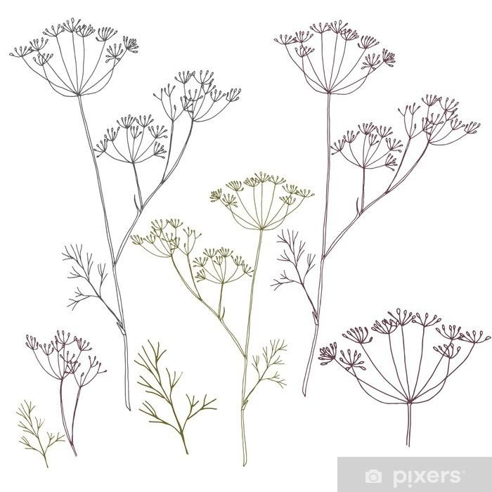 Sticker Pixerstick Dill ou de fleurs de fenouil et de feuilles. - Plantes et fleurs