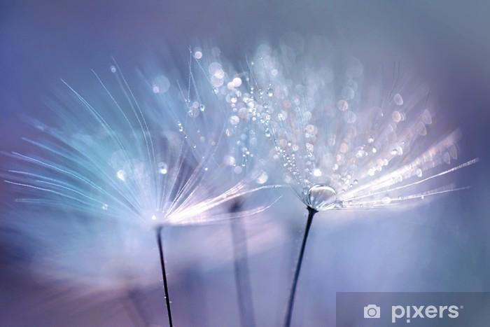 Naklejka Pixerstick Piękne krople rosy na makro z nasion mniszka. Piękne niebieskie tło. Duże złote krople rosy na dandelion spadochronem. Soft marzycielski przetargu formą artystyczny wizerunek. - Rośliny i kwiaty