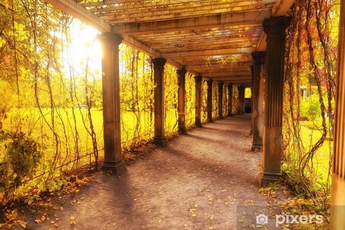 Beautiful autumn park Vinyl Wall Mural - Landscapes