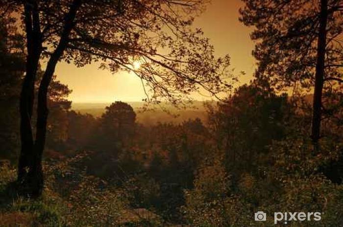Naklejka Pixerstick Parc naturalny régional du Gâtinais français en automne - Krajobrazy
