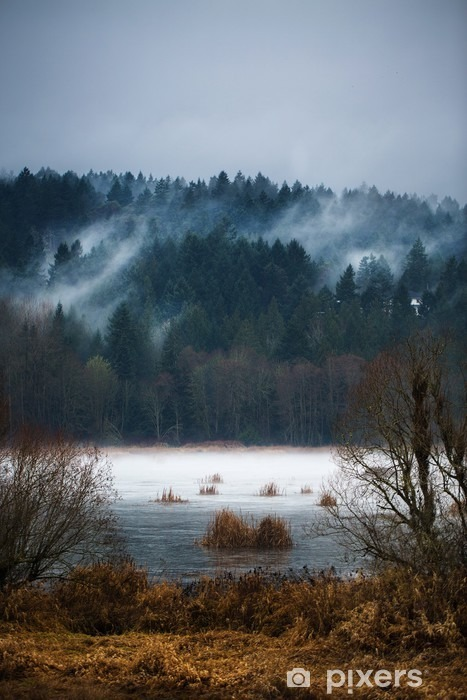 Autumn Fogs / Mists of Vancouver Island Vinyl Wall Mural - Landscapes