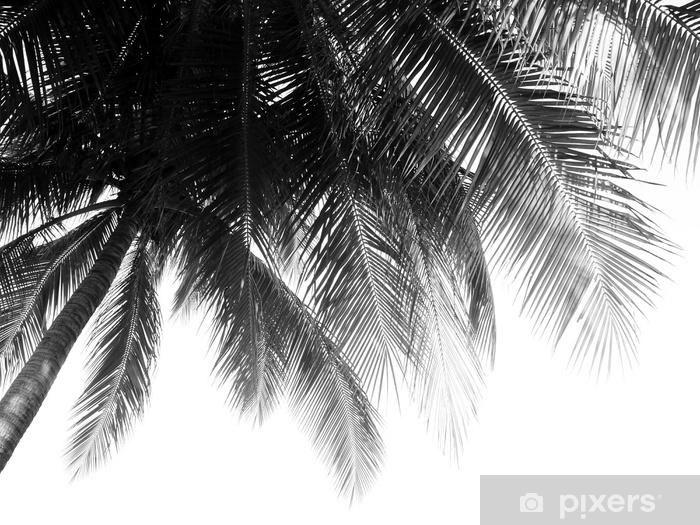 Sticker Pixerstick Belle feuille de palmiers sur fond blanc - Plantes et fleurs