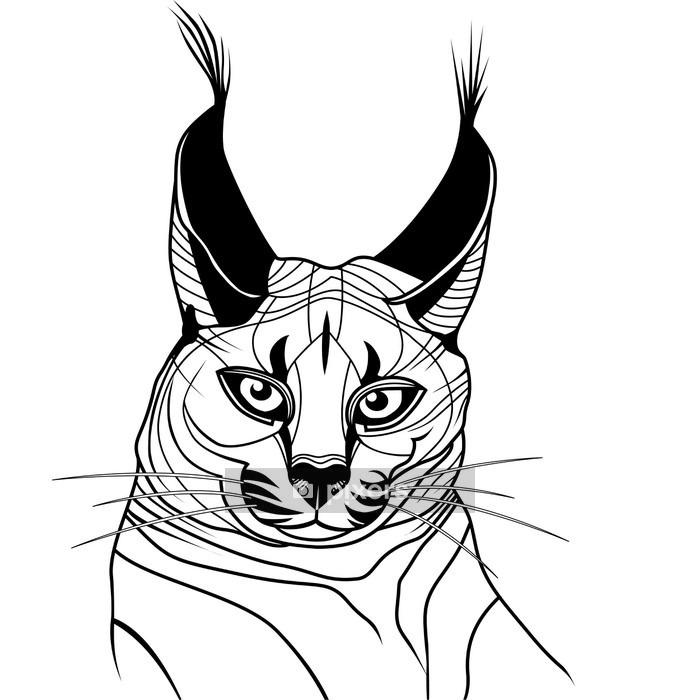 Adesivo da Parete Gatto caracal gattino selvatico abbozzo animale vettore tatuaggio - Animali