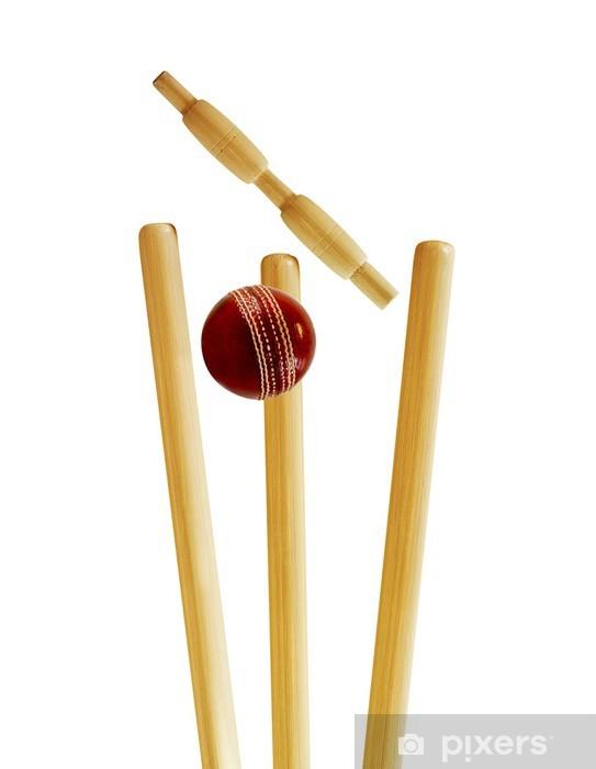 Cricket match Pixerstick Sticker - Sports Items