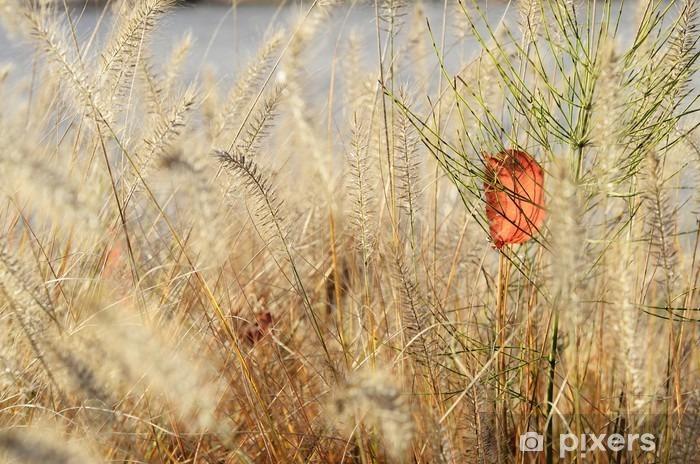 Naklejka Pixerstick Natura tło roślin - Rośliny i kwiaty