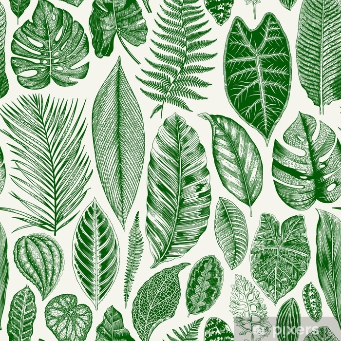 Vinil Duvar Resmi Vektörel dikişsiz vintage çiçek deseni. Egzotik yapraklar. botanik klasik illüstrasyon. yeşil - Çiçek ve bitkiler