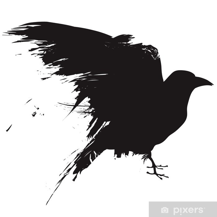 Vector raven or crow in grunge style Vinyl Wall Mural - Wall decals