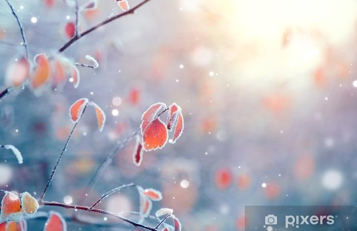 Naklejka Pixerstick Zima charakter tła. Mrożone oddział z liści zbliżenie - Krajobrazy