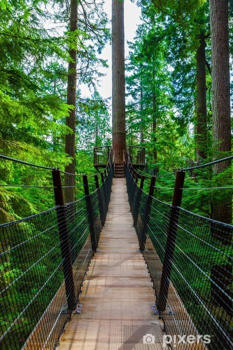 Fotomural Estándar Puente colgante de Capilano copas de los árboles en el parque, Columbia Británica - Medio ambiente
