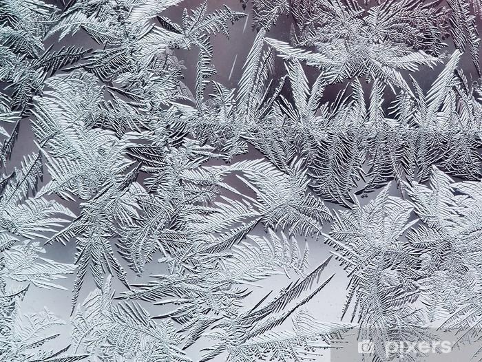 Papier peint vinyle Beau motif givré d'hiver en cristaux transparents fragiles sur le verre - Ressources graphiques