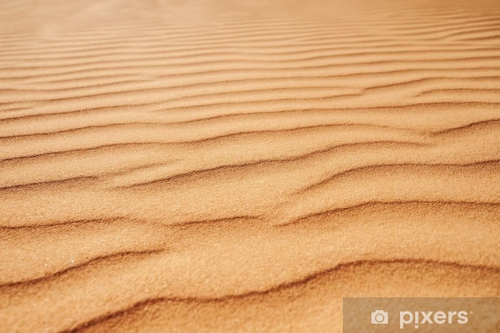closeup sand texture. picture with soft focus Vinyl Wall Mural - Landscapes