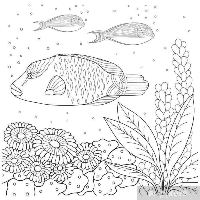 Carta Da Parati In Vinile Modello Doodle In Bianco E Nero Modello Marine Per Libro Da Colorare Mare Pesce Alghe Le Bolle Libro Da Colorare Per