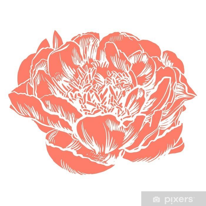 Taie d'oreiller Main-dessin pivoines. Vector fleurs graphiques. Arrière-plan décoratif pour les cartes, les invitations. Modèle de carte de voeux. - Plantes et fleurs